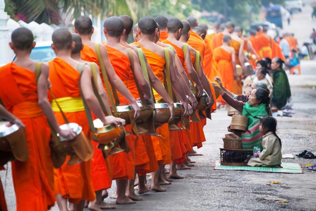 Benjamin – Luang Prabang et ses alentours, cultures et randonnées (9 jours)
