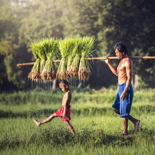 le-nord-laos-entre-nature-et-ethnies (1)