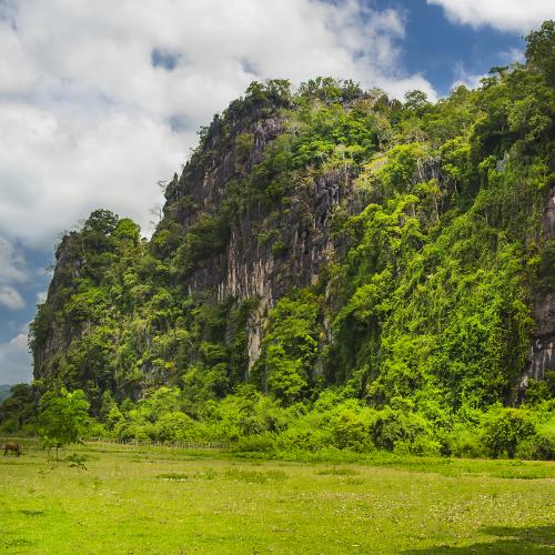 nature-au-coeur-du-laos-1