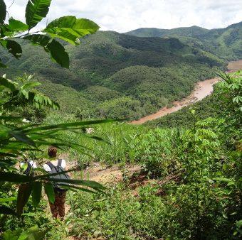 Avis Dupuy Laos
