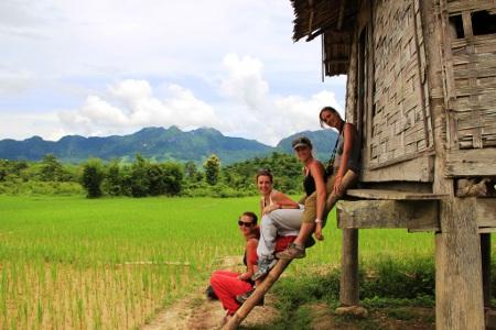Avis groupe Toussaint Laos