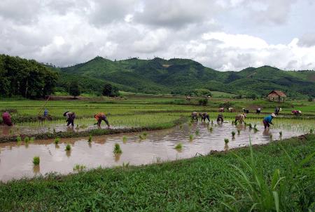 Mr et Mme BLANK – Voyage au Nord Laos (12 jours)