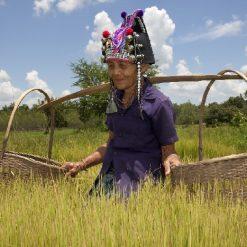 Nord Est Laos